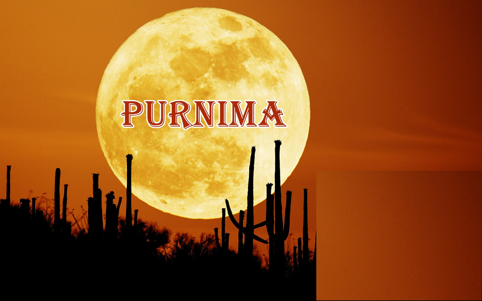 Guru purnima essay in english