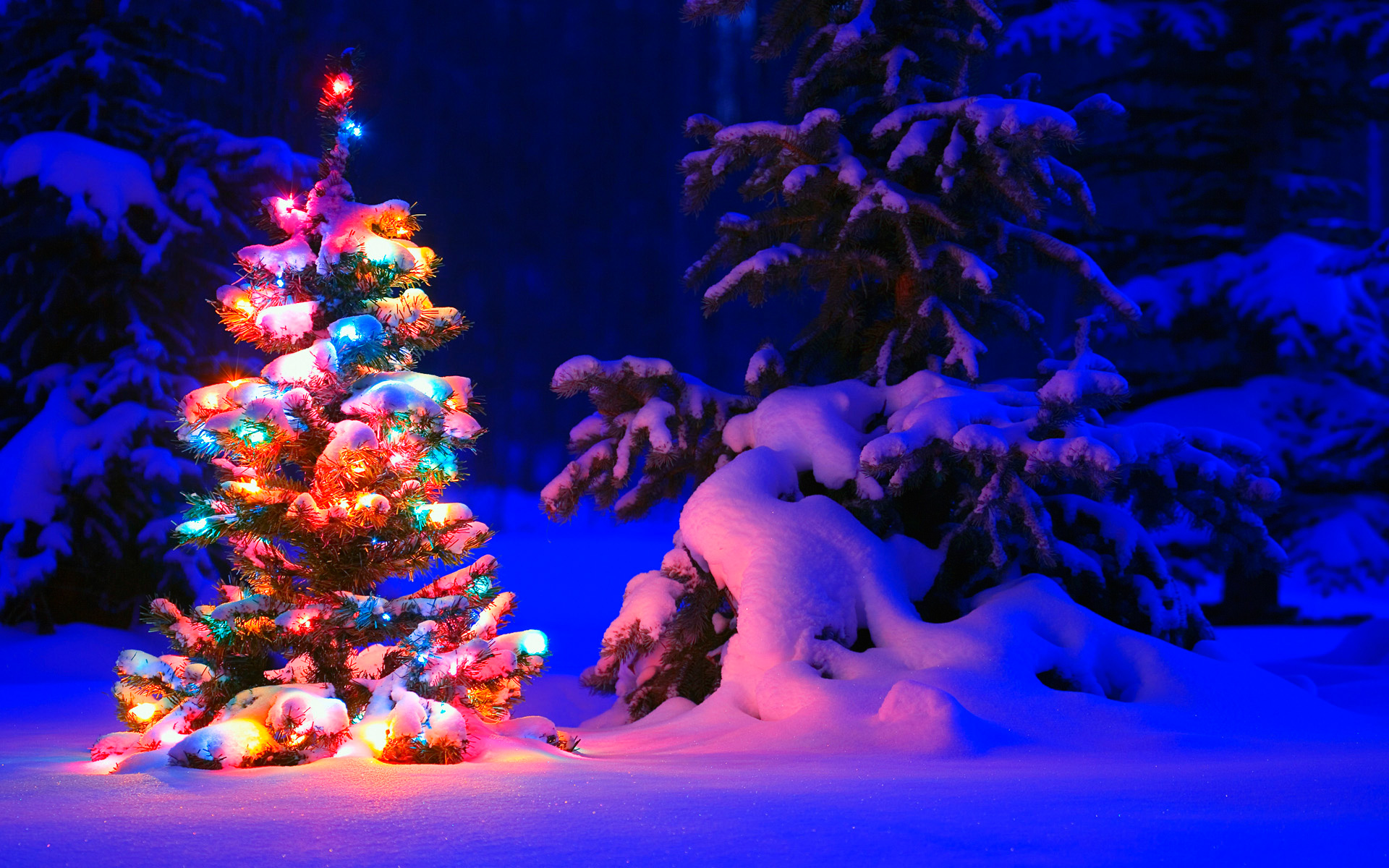 Merry Christmas 2020 HD Wallpapers