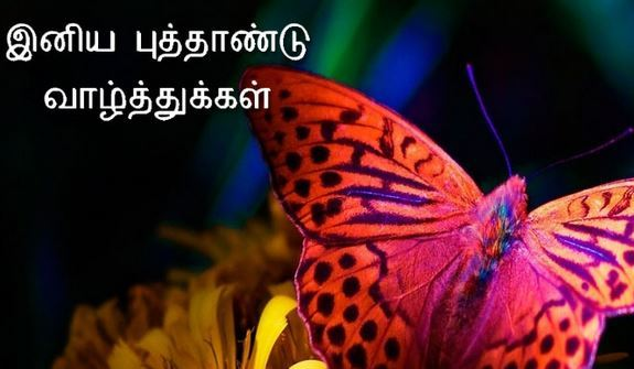 Happy New Year 2017 Greeting Card in Tamil
