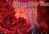 Happy New Year 2017 MP4 Videos