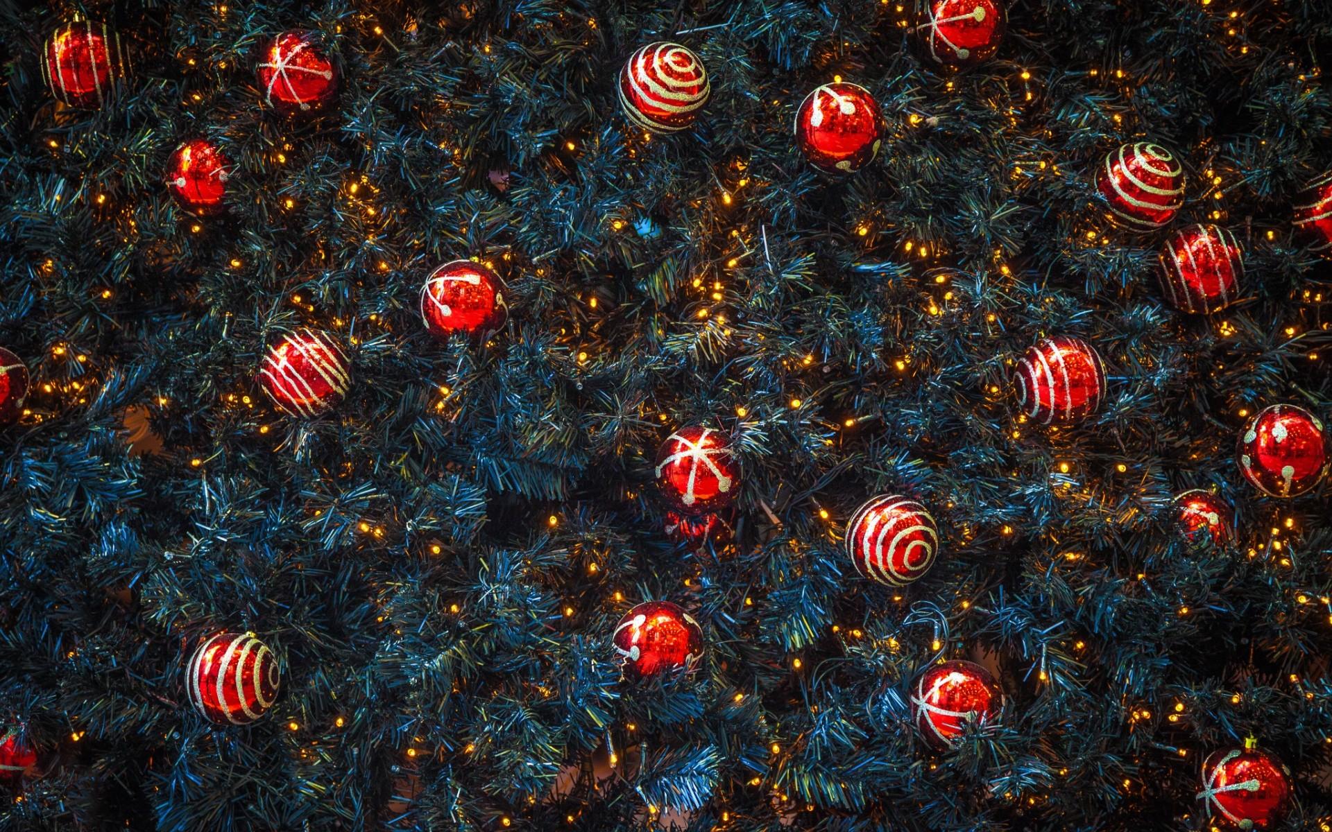 2017}* Merry Christmas Xmas Poems & Shayari in English & Hindi {Best}