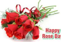 Rose Day 2017 Wishes, Quotes, Messages, SMS, Shayari & Poems