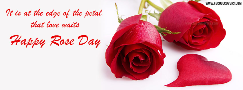 Rose Day 2017 FB Cover Photo
