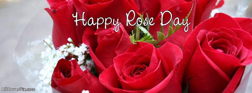 Rose Day 2018 Facebook Cover Photos