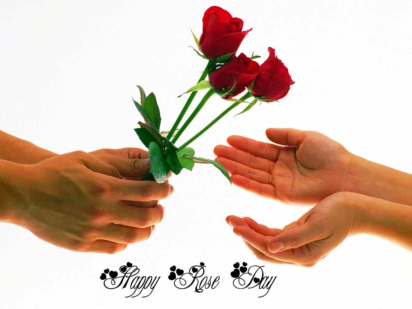 Rose Day 2017 Image For Boyfriend & Girlfriend