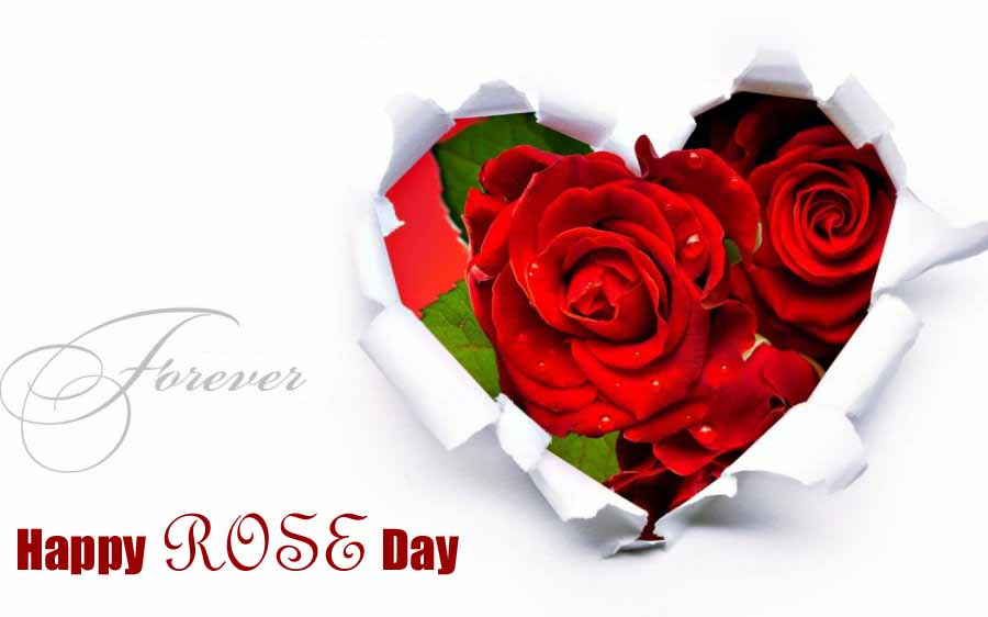 Rose Day 2018 Image For Fiance & Friends