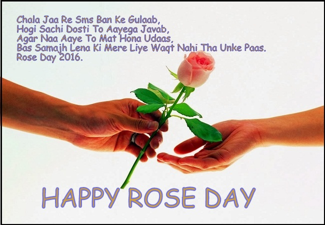 Rose Day 2017 Image Wife & Husband