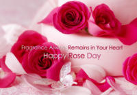Rose Day 2017 Images