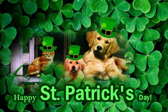 Happy St. Patrick's Day 2017 Free Ecard