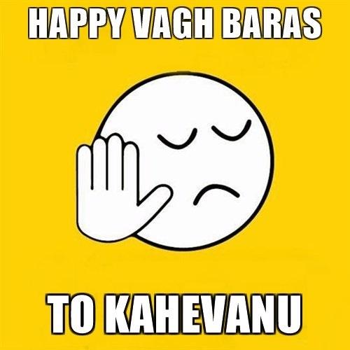 Vagh Baras WhatsApp DP